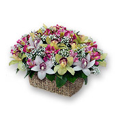 Kiev, Basket with orchids